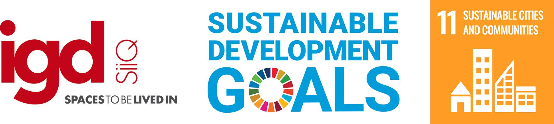 SDG_IGD_eng_11