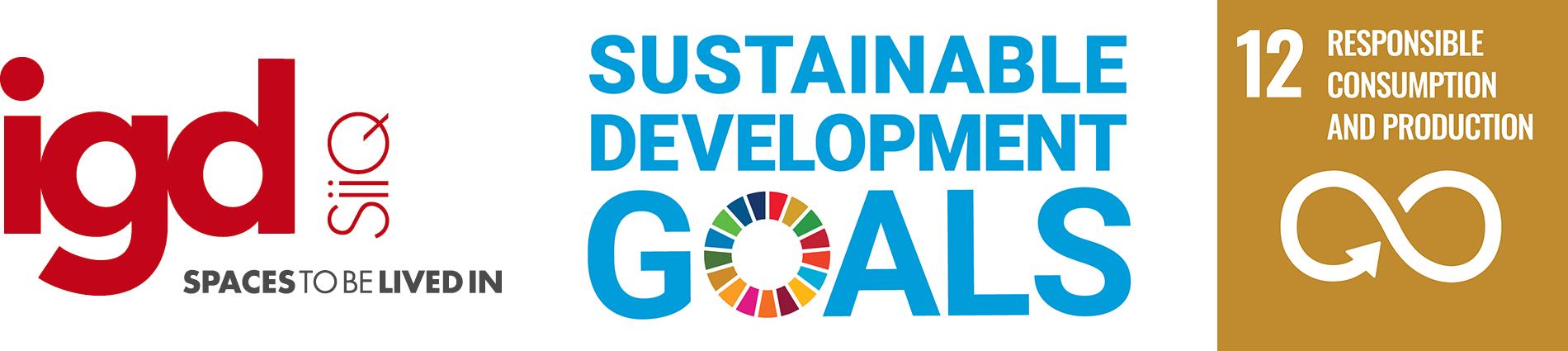 SDG_IGD_eng_12
