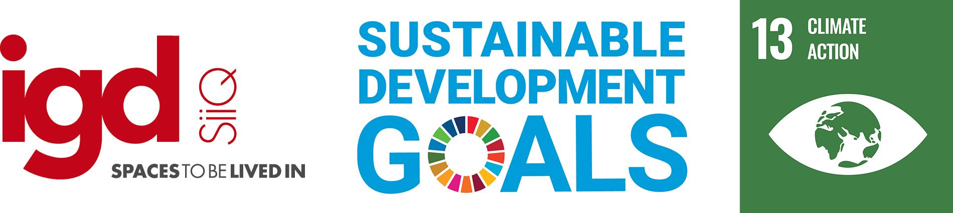 SDG_IGD_eng_13